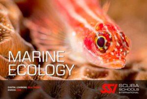 Corso SSI Marine Ecology