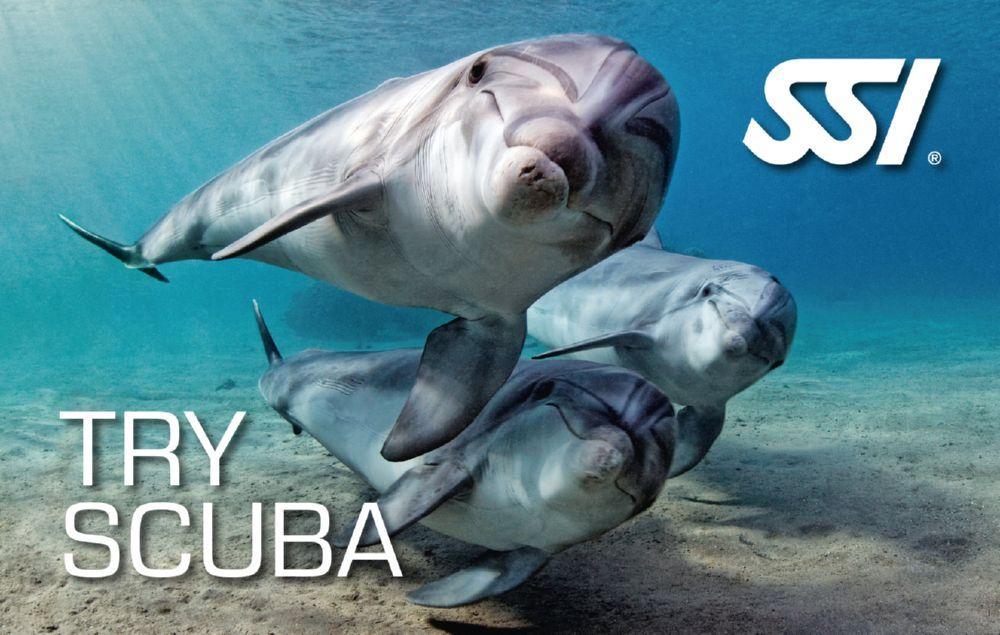 Try scuba SSI